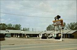 Buffalo Motel