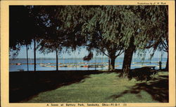 A Scene at Battery Park in Sandusky, Ohio Postcard