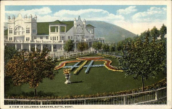 Columbia Gardens Butte Mt