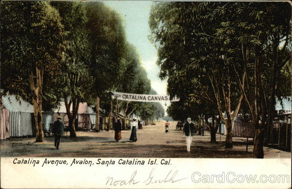 Catalina Avenue, Avalon