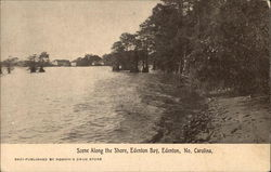Scene Along the Shore, Edenton Bay