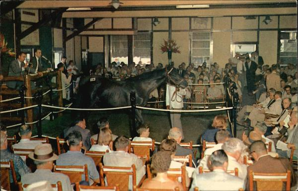 Keeneland Race Course - Yearling Sales Lexington Kentucky