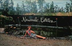 Nanawale Estates - Entrance