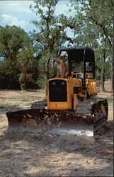 Fortney Excavating