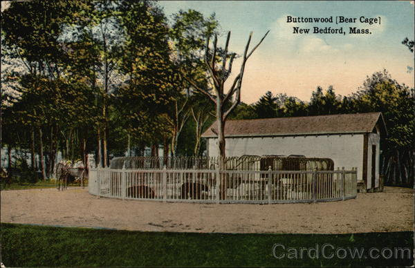 Buttonwood -- Bear Cage New Bedford Massachusetts