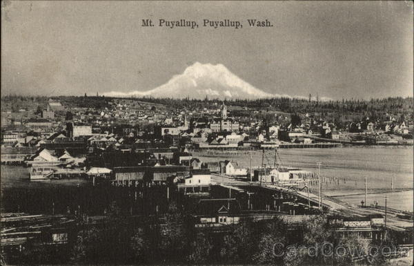 Aerial View, Mt. Puyallup in Background Washington