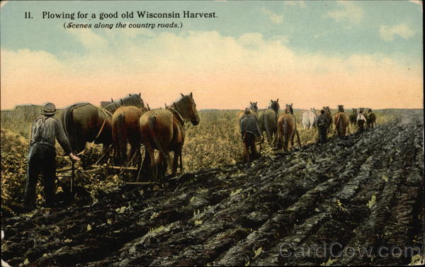 Plowing for a Good Old Wisconsin Harvest. (Scenes along the country roads)