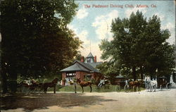 The Piedmont Driving Club