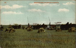Harvesting in South Dakota