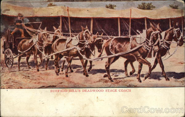 Buffalo Bill's Deadwood Stage Coach Horses