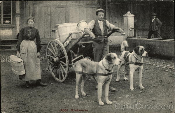 Boy With Cart Pulled by Two Dogs