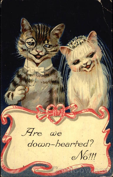 Are We Down-Hearted? No!!! Cats Marriage & Wedding