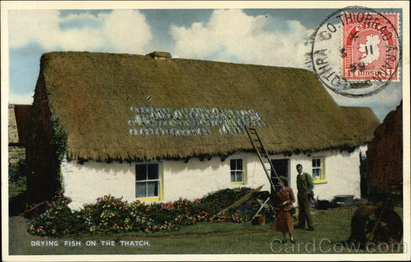 Drying Fish on the Thatch Ireland