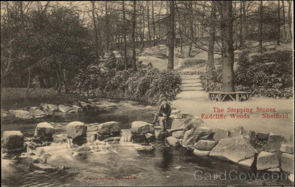 Endcliffe Woods - The Stepping Stones Sheffield England