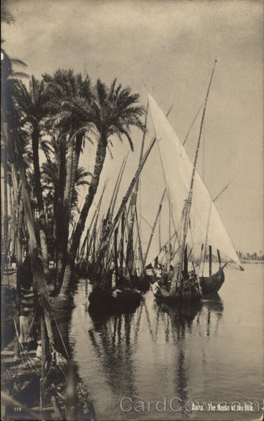 The Banks of the Nile Cairo Egypt Africa