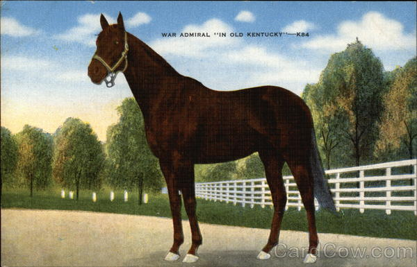 War Admiral In Old Kentucky Horses