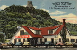 The Hot Fish Shop Postcard