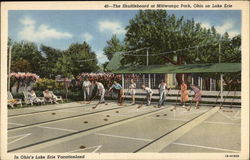 The Shuffleboard at Mitiwanga Park