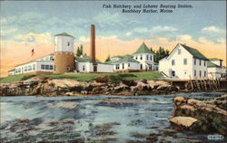 Fish Hatchery & Lobster Rearing Station