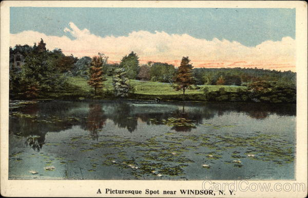 A Picturesque Spot near Windsor, N.Y New York