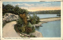 The Causeway, Middlesex Fells