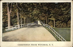 Greetings from Windsor, N.Y Postcard