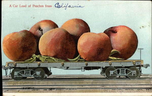 A Car Load of Peaches from California Exaggeration