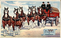 The Wilson & Co. Six Horse Hitch of Clydesdales