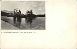 Loon Island - Newfound Lake