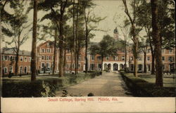 Jesuit College, Spring Hill