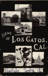 Views of Los Gatos, California