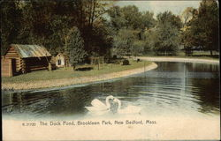 Brooklawn Park - The Duck Pond