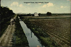 Irrigated Farm