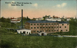 Electric Power Plant & Leather Company, Dama Mills