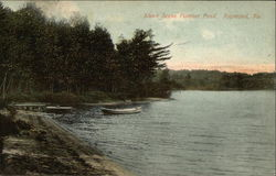Shore Scene on Panther Pond