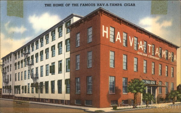 The Home of the Famous Hav-A-Tampa Cigar Florida Tobacco