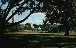 University of Puerto Rico - Campus and Tower
