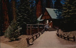 Giant Forest Lodge - Sequoia National Park