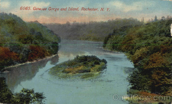 Genesee Gorge And Island Rochester New York