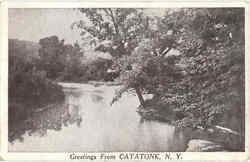 Greetings From Catatonk