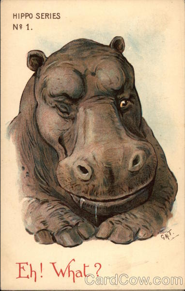Hippo Series No. 1, Eh! What? G. H. Thompson