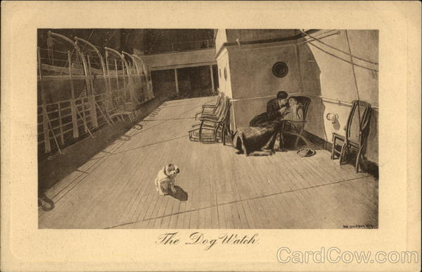 The Dog Watch Dogs Cruise Ships