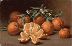 Still Life of Oranges