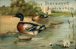 A Pair of Ducks Near a Pond With Waterlily and Cattails