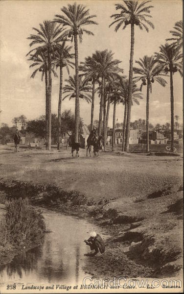 Landscape and Village at Bedrach Cairo Egypt Africa