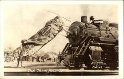 The Train Hold-Up - Grasshopper