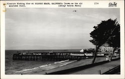 Pleasure Fishing Pier (Known as the old Moonstead Pier)