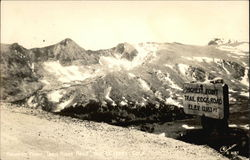 Trail Ridge Road Postcard