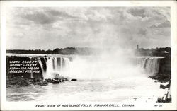 Front View of Horseshoe Falls