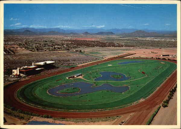 arizona downs at turf paradise horse racing